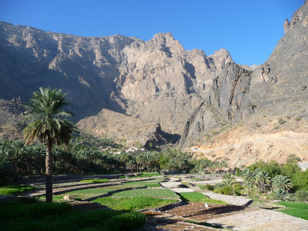 balad-seet-jardins-decouverte-oman-michel-bessone