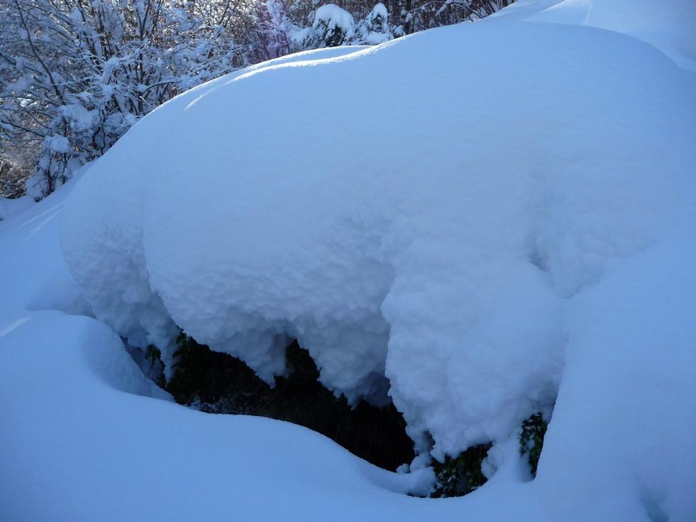 beaucoup de neige-raquettes-cadeilhan-trachere