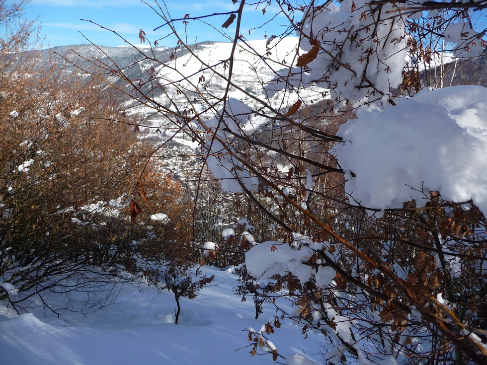 branches chargees de neige-raquettes-cadeilhan-trachere