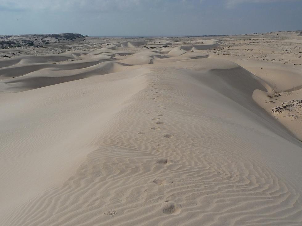 dune-desert blanc-khaluf-decouverte-oman