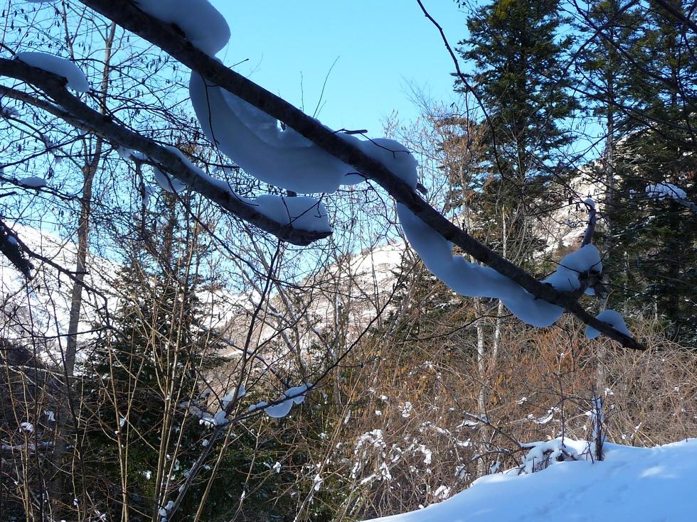 serpent de neige-raquettes-rioumajou
