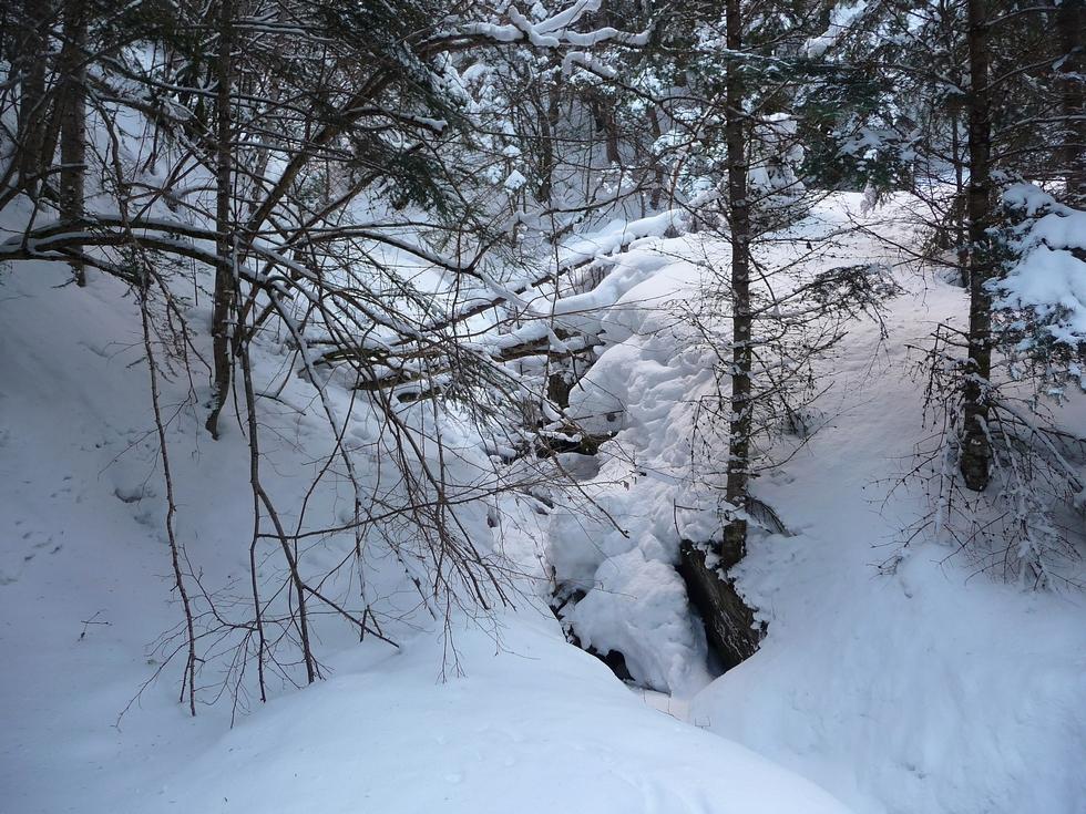 ruisseau-raquettes-rioumajou