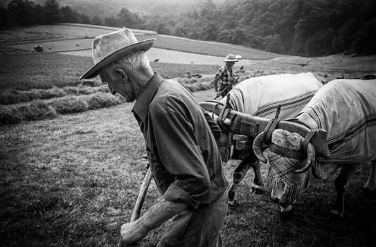 travaux des champs-bigorre-pierre duffour