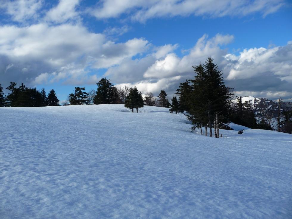 terrain plat-monne rouye-raquettes