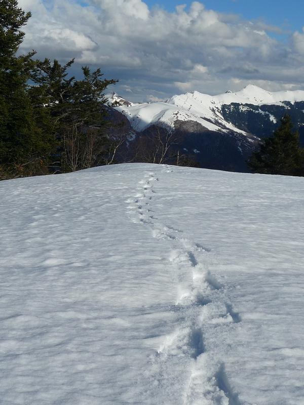 neige de printemps-monne rouye-raquettes