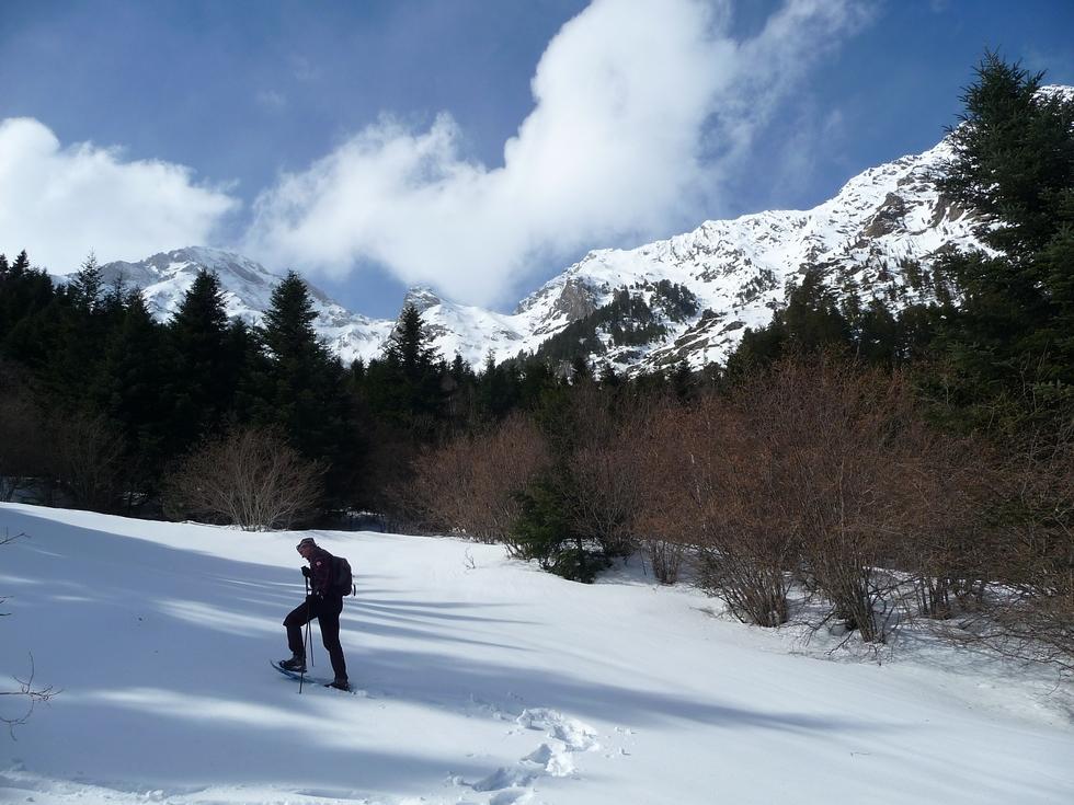 clairiere-montagne d aret-rioumajou-raquettes