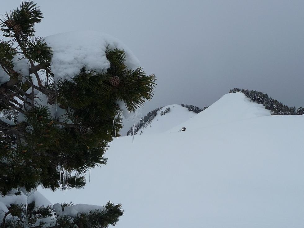 ambiance hivernale-crete des sorcieres-bastan-raquettes-massif du neouvielle-pentecote