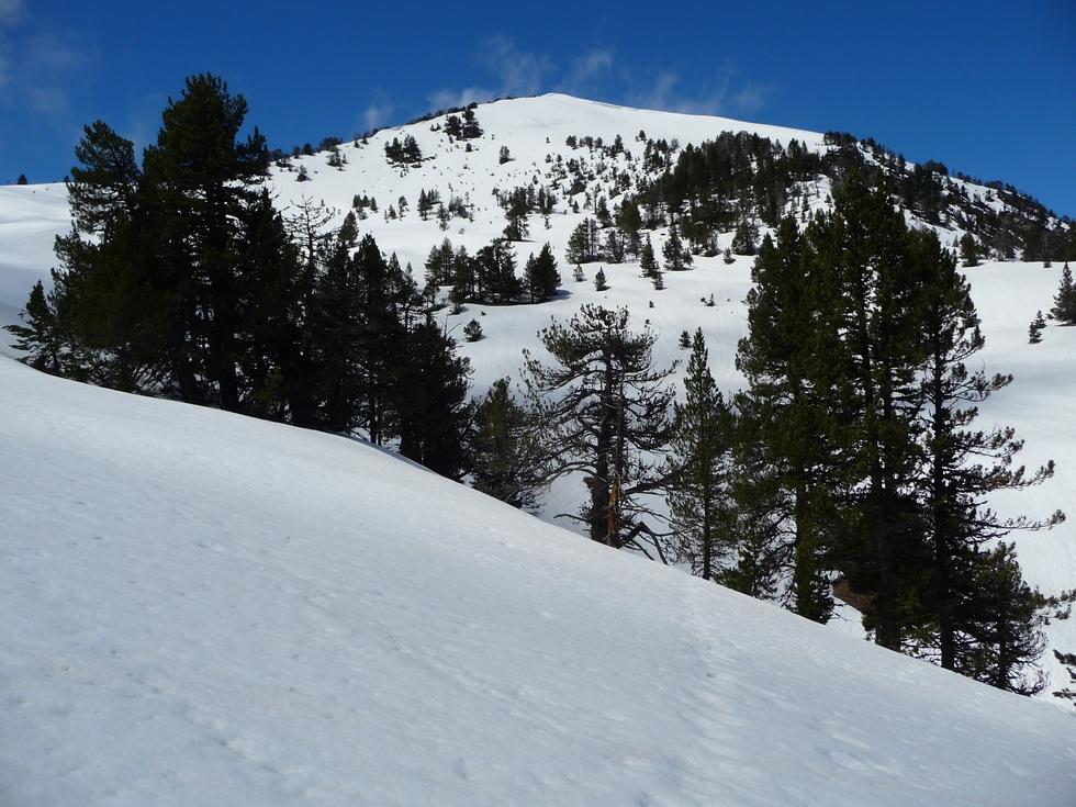 monpelat-guere pele en neige-raquettes-monpelat