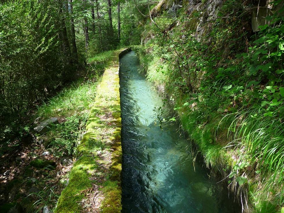 sous-bois-canal-par-dela-le-moudang