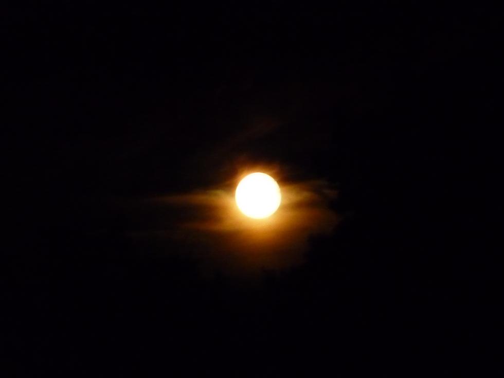 effet-lune-collioure-retour-collioure