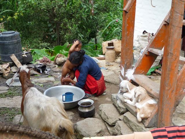 toilette-a-pres-de 3000-metres-tour-des-annapurnas-nepal