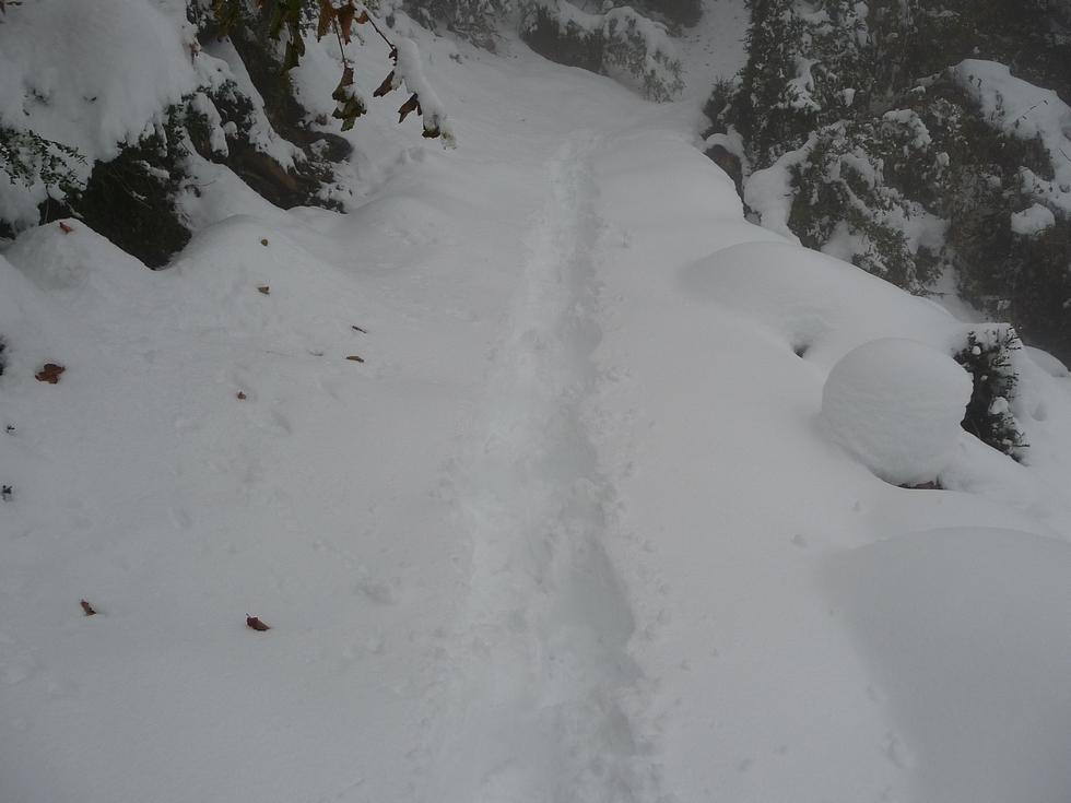 neige-bonne-qualite-raquettes-cadeilhan-trachere