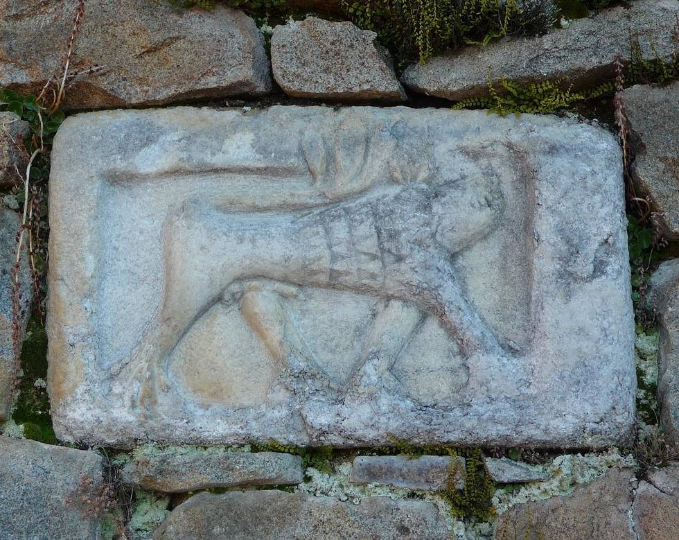 monstre-de-ris-mysterieuses-sculptures-d-animaux