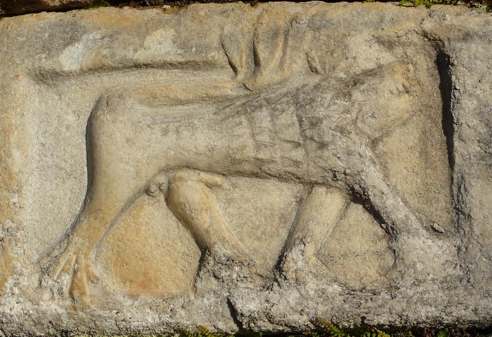 la-bete-sous-autre-eclairage-monstre-de-ris-mysterieuses-sculptures-d-animaux