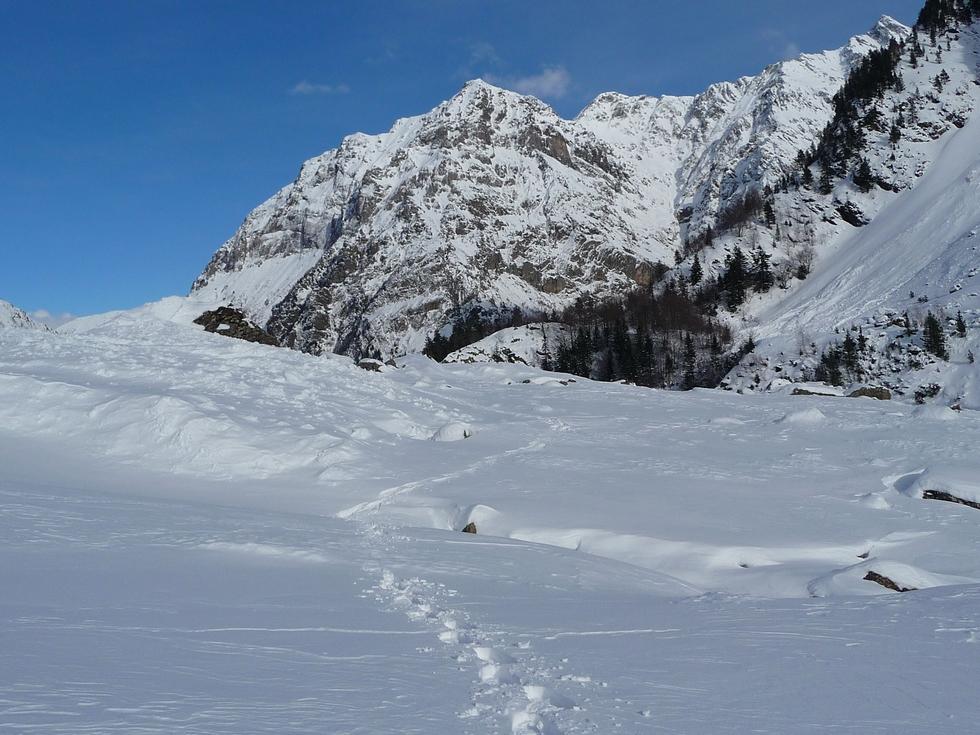 grain-neige-parfait-pour-raquette-raquettes-vallon-la-pez