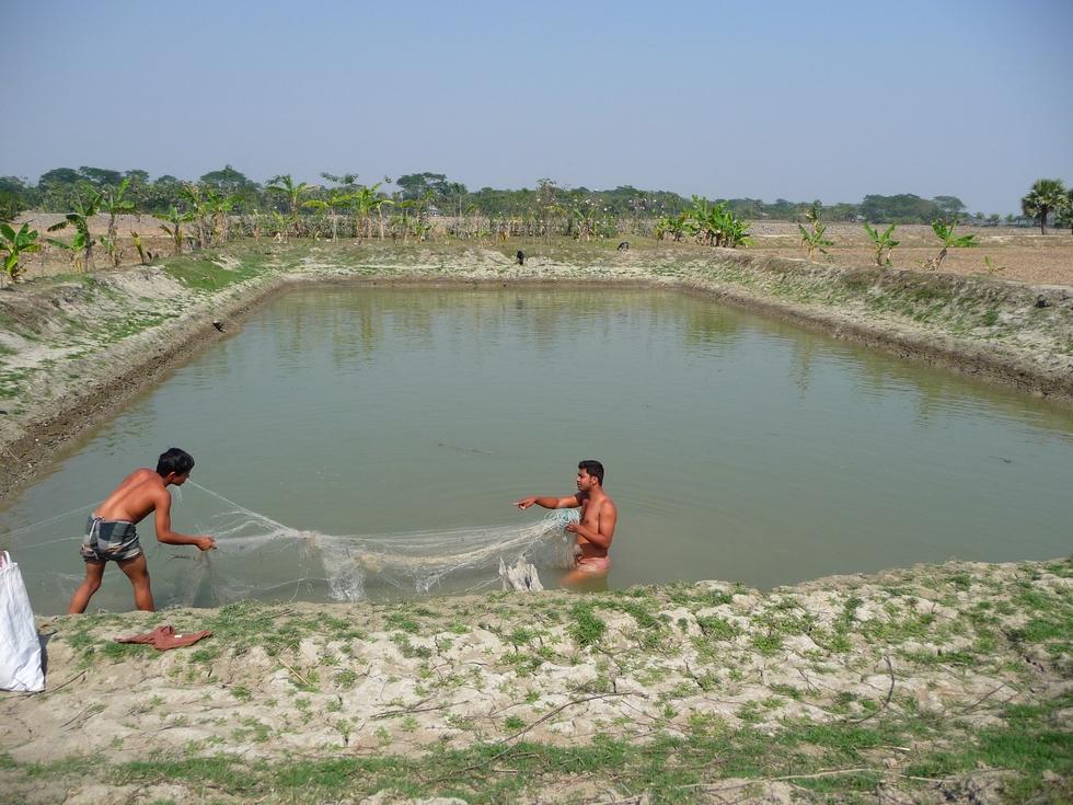 demeler-le-filet-bangladesh-chez-mes-amis-voyage-d-exception