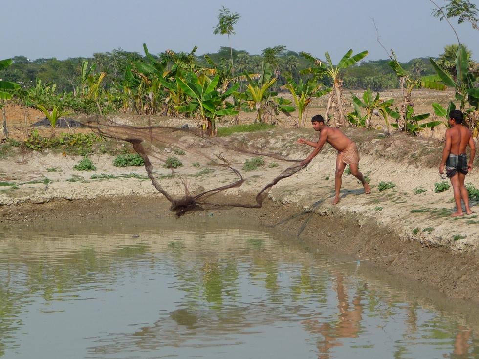 rubel-lance-a-nouveau-epervier-bangladesh-chez-mes-amis-voyage-d-exception