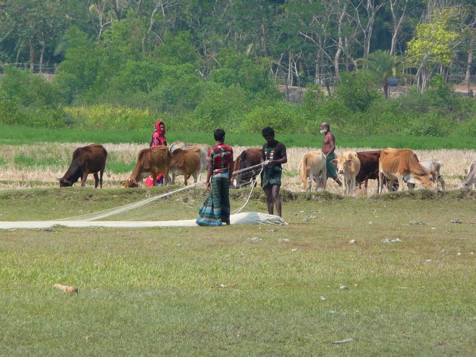 verification-des-filets-bangladesh-chez-mes-amis-voyage-d-exception