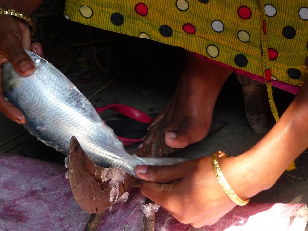 boti-maintenu-et-cale-par-un-pied-bangladesh-chez-mes-amis-voyage-d-exception
