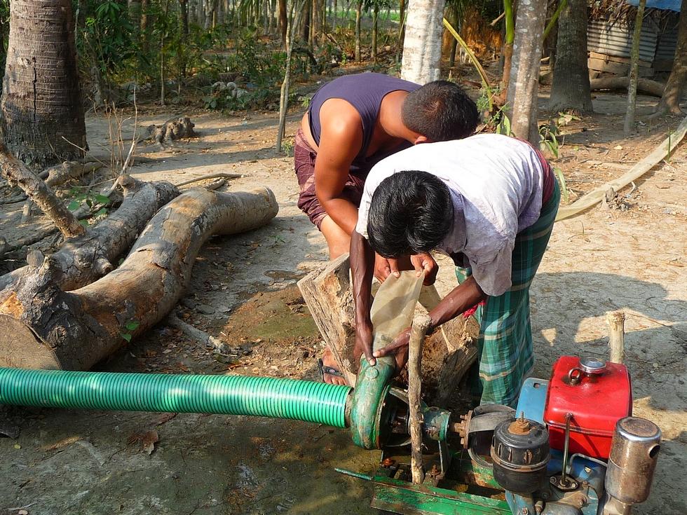 quelques-semaines-apres-installation-materiel-irrigation-bangladesh-chez-mes-amis-voyage-d-exception
