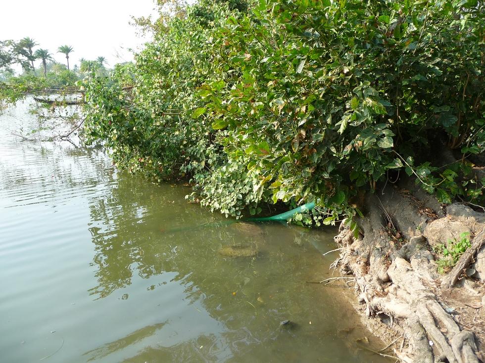 eau-pompee-dans-riviere-bangladesh-chez-mes-amis-voyage-d-exception