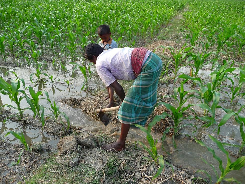houe-rend-toujours-bien-service-bangladesh-chez-mes-amis-voyage-d-exception
