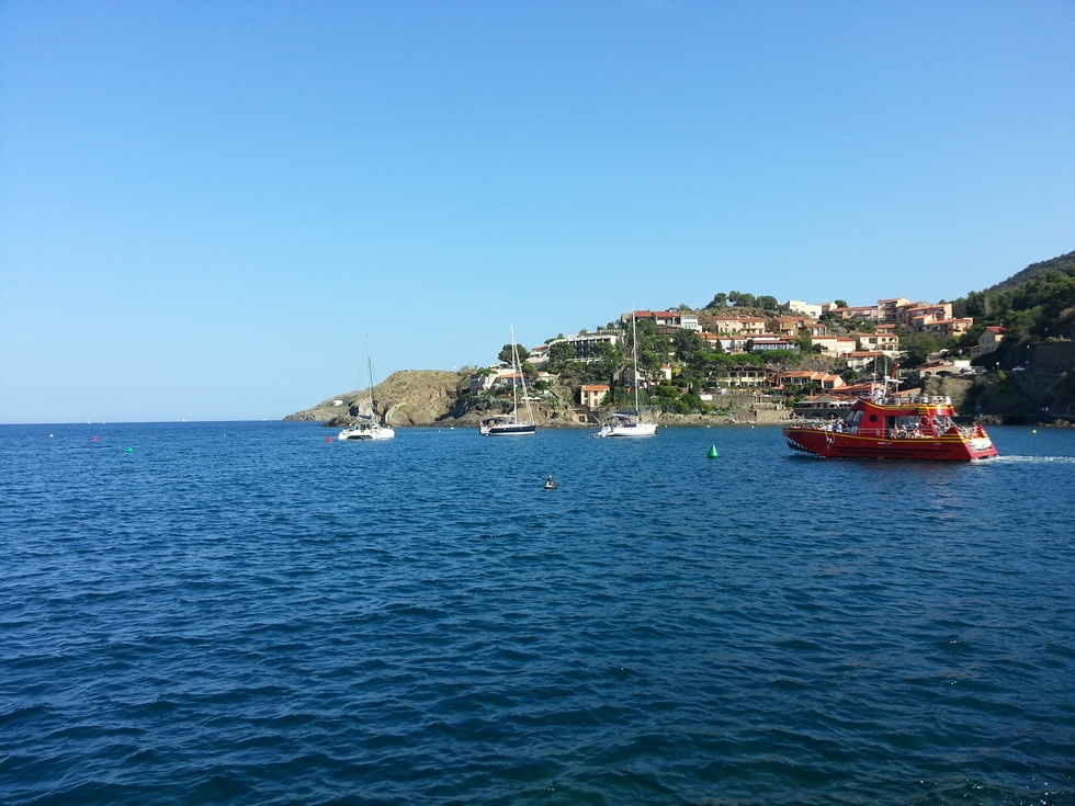 mer-belle-rade-collioure-premier-temps-des-vendanges-collioure