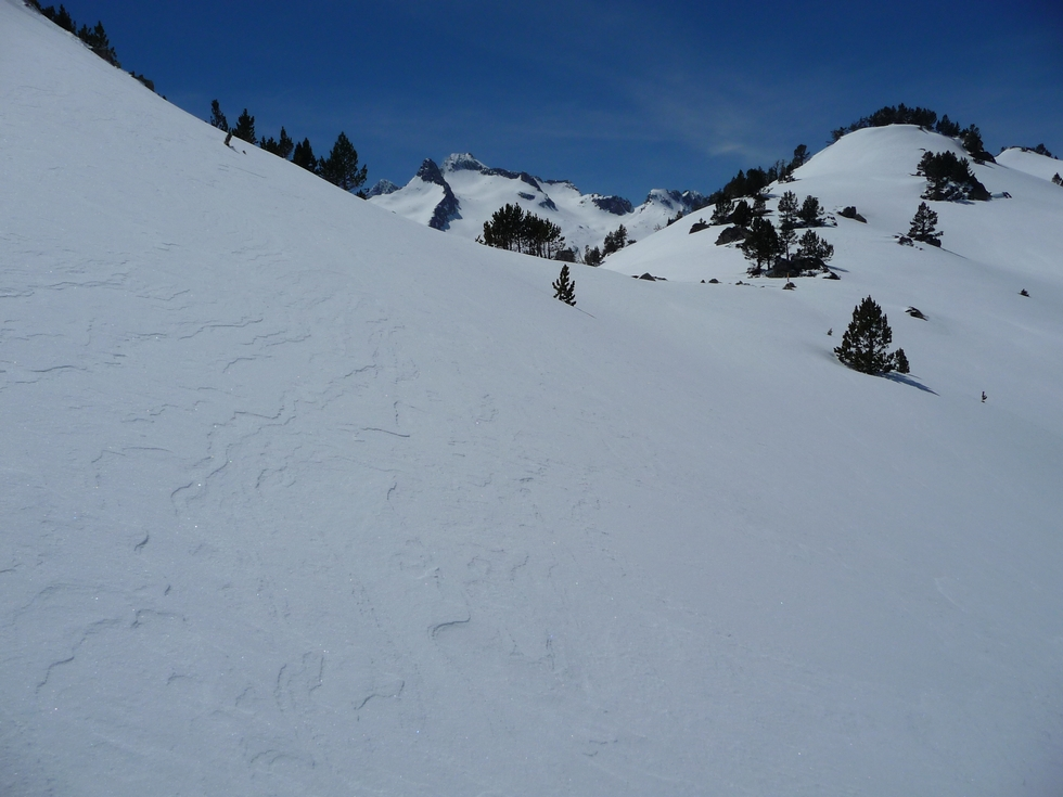 arrivee-au-col-aumar-beaucoup-neige-raquette-printemps-vallon-estibere
