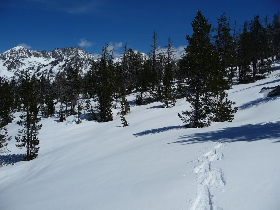 neige-ideale-pour-faire-raquette-printemps-vallon-estibere