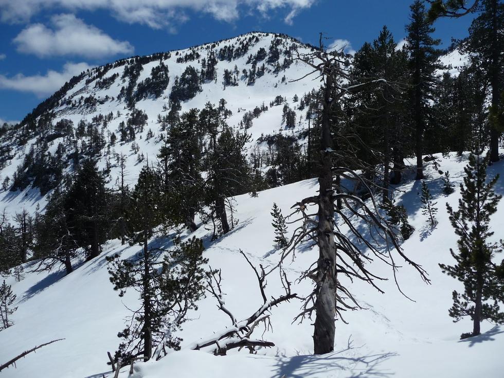 monpelat-versant-nord-raquette-printemps-vallon-estibere
