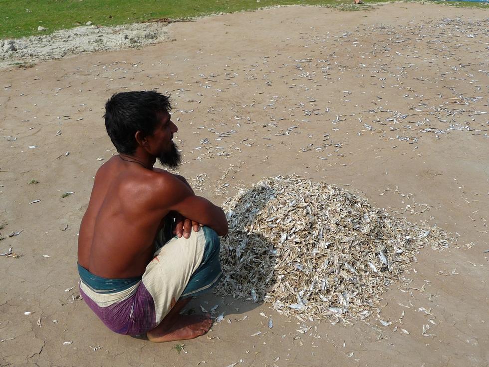 ce-pecheur-nous-propose-de-lui-acheter-poisson-seche-bangladesh-second-travel-3
