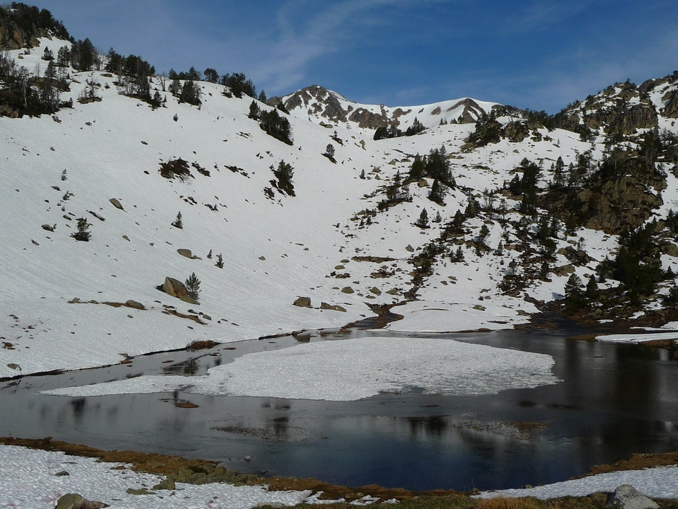 lac-vert-laquet-coste-oueillere-au-lac-port-bielh-canards-sauvages-raquettes-et-canicule