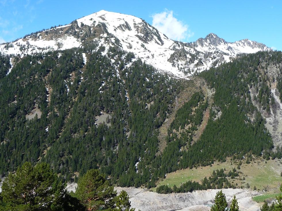 vue-d-ensemble-grosse-avalanche-cet-hiver-au-monpelat-1
