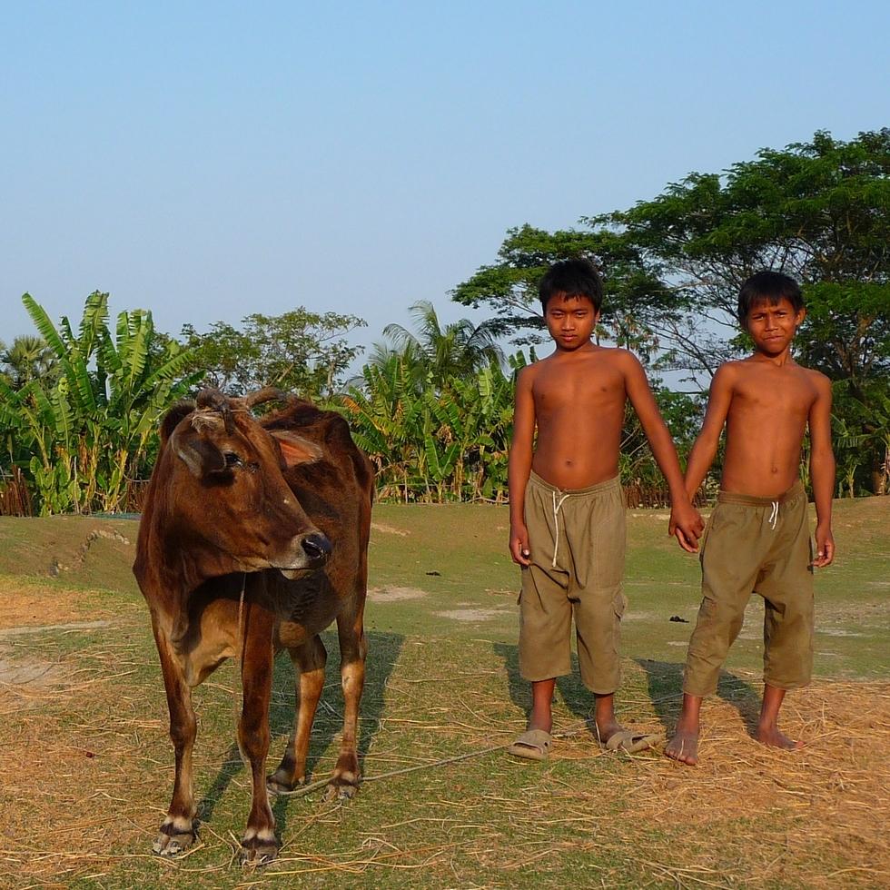 deux-freres-bouddhistes-posant-a-cote-leur-vache-bangladesh-second-travel-9