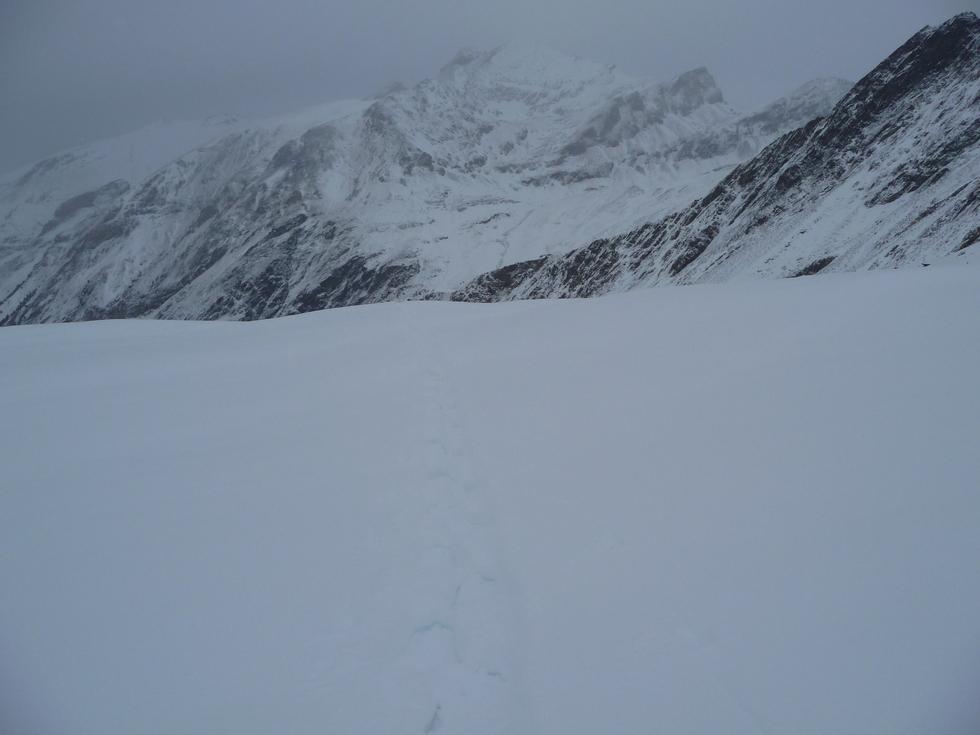 neige-poudreuse-extra-23-novembre-on-rechausse-les-raquettes-en-vallee-aure