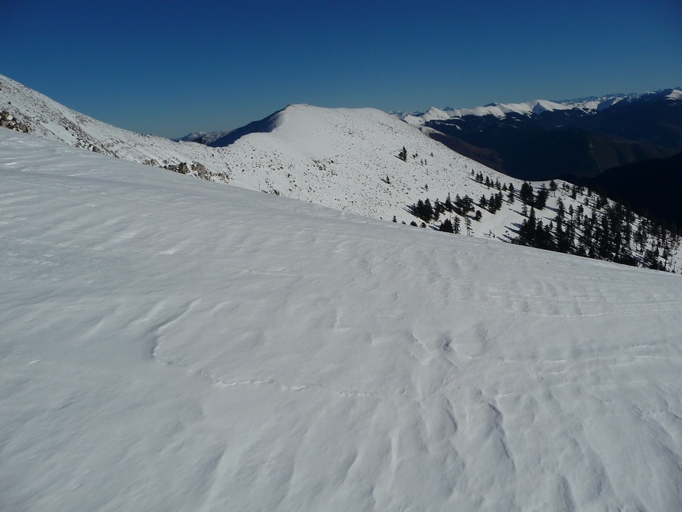 en-cette-fin-novembre-la-neige-est-bien-la-signal-bassia-en-raquettes