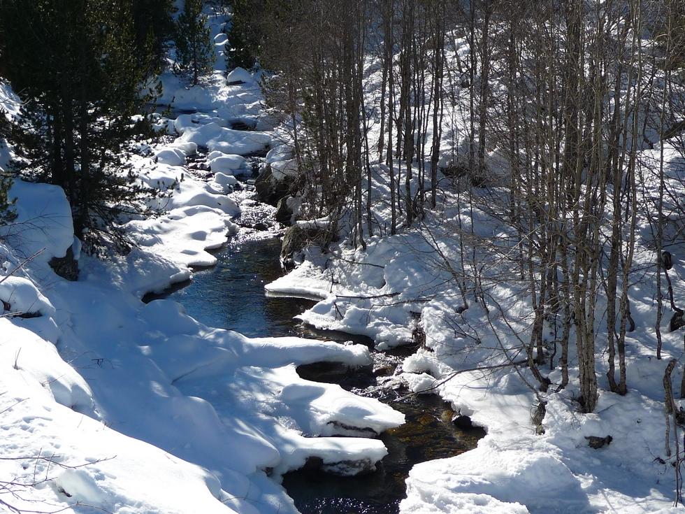 torrent-vers-1800-m-a-colomers-dans-encantats-une-tres-belle-neige-pour-faire-raquette