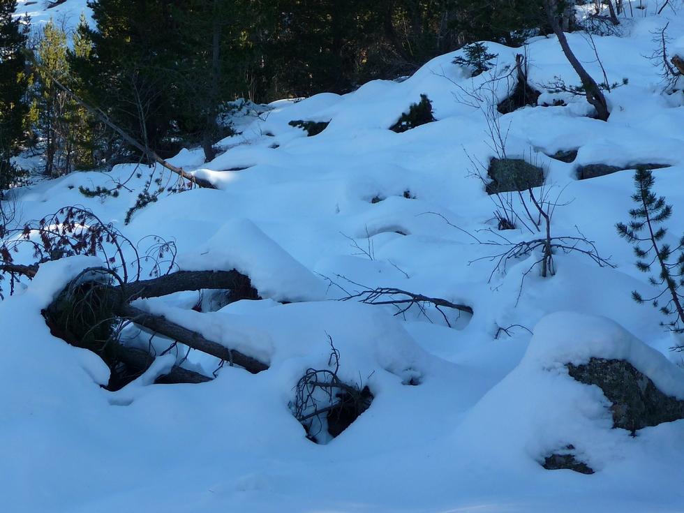 il-y-a-vraiment-neige-sans-raquettes-on-s-enfonce-a-colomers-dans-encantats-une-tres-belle-neige-pour-faire-raquette