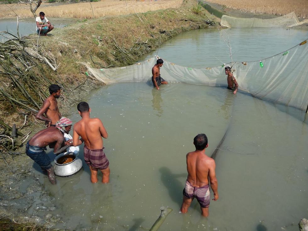 grand-filet-autour-doit-etre-bien-installe-bangladesh-second-travel-12