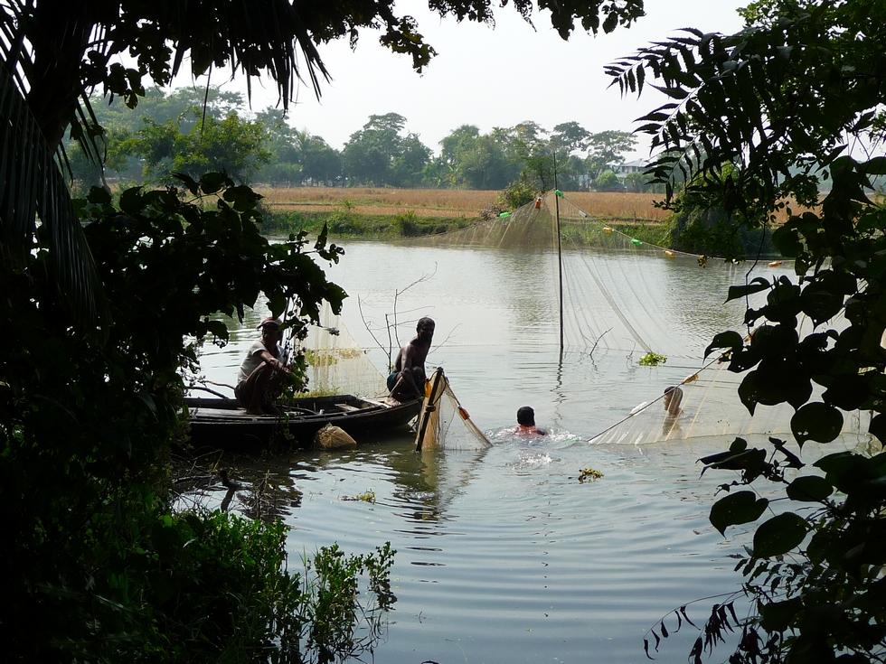 il-faut-d-abord-retirer-toutes-les-plantes-aquatiques-bangladesh-second-travel-13