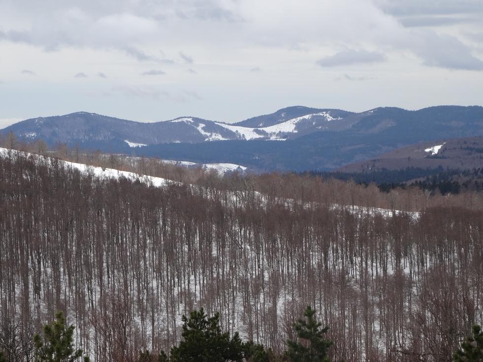 de-la-neige-beaucoup-de-neige-plein-possibilites-pour-randonner-en-raquettes-neiges-de-paques-a-aigoual