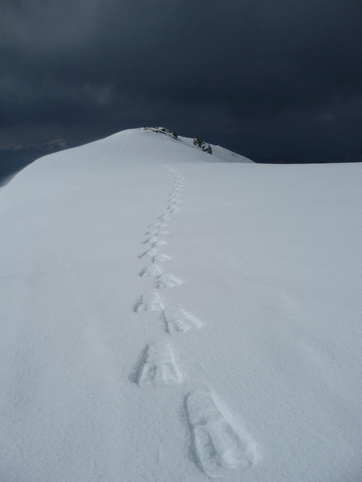 champs-neige-ouatee-fond-air-frais-au-montious