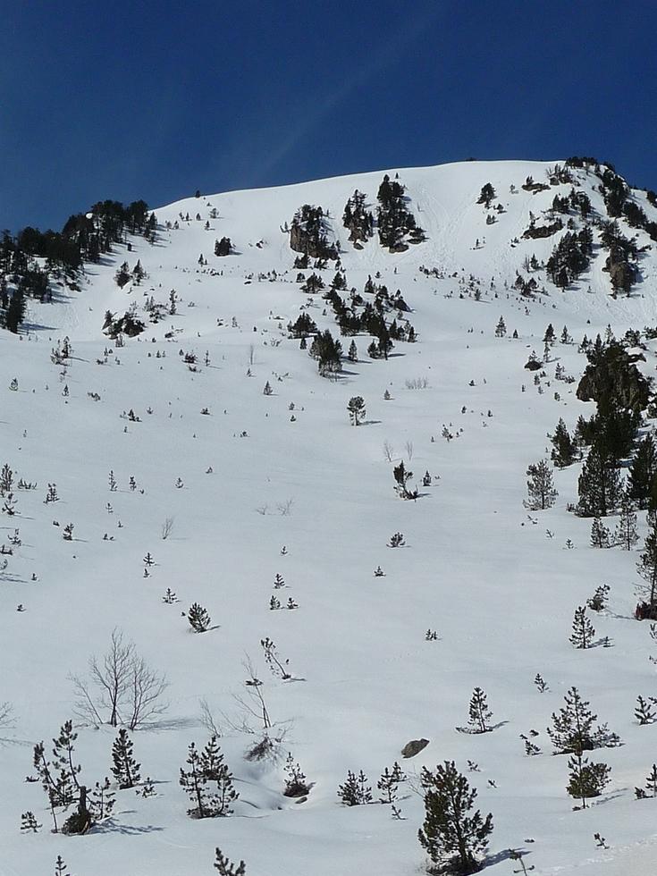 versant-nord-est-monpelat-pas-grosse-avanche-poudreuse-cet-hiver-estibere-et-gourguet-1