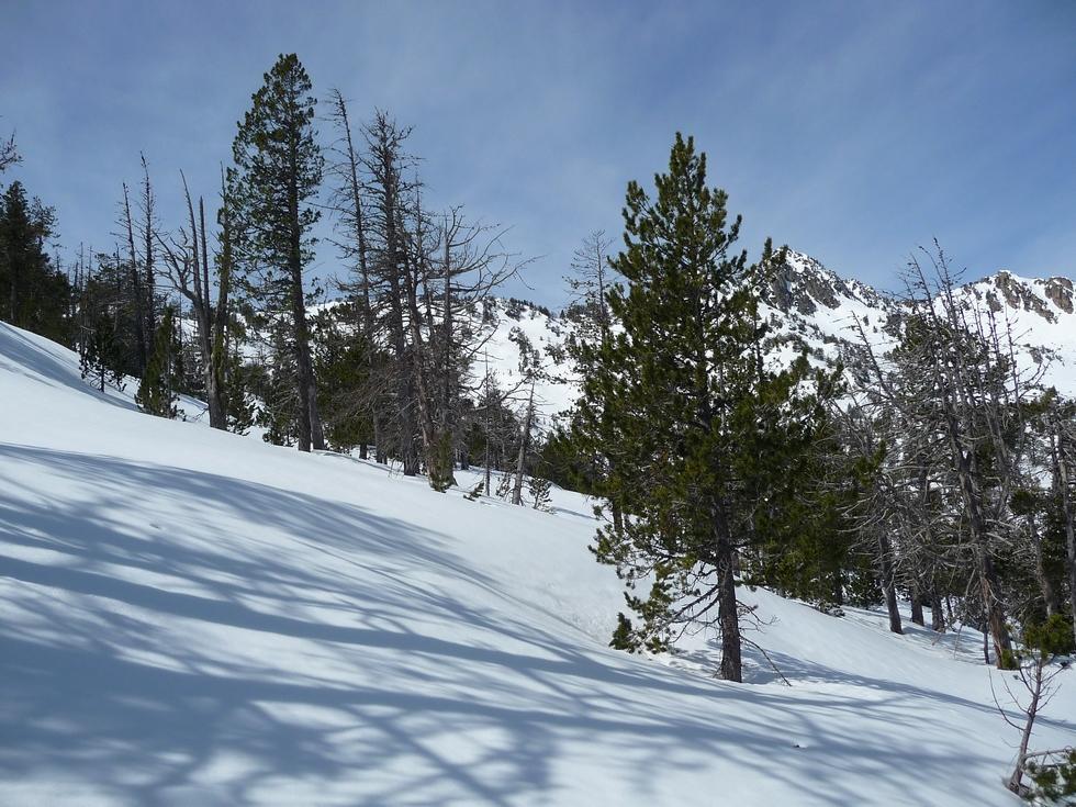 un-epais-manteau-neigeux-estibere-et-gourguet-1
