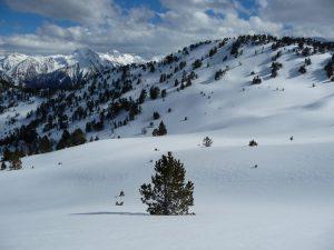 de-superbes-champs-de-neige-mi-avril-au-monpelat-2