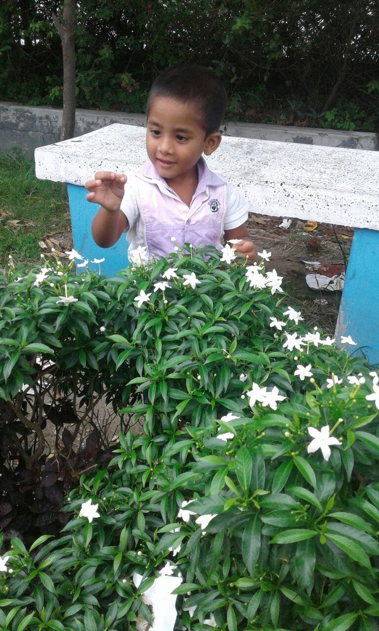 ces-fleurs-sont-etonnantes-news-recentes-amis-bangladesh