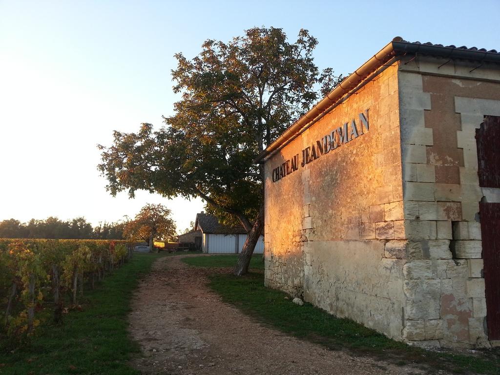 chateau-jeandeman--vignoble-roy-trocard-fin-vendanges-dans-bordelais