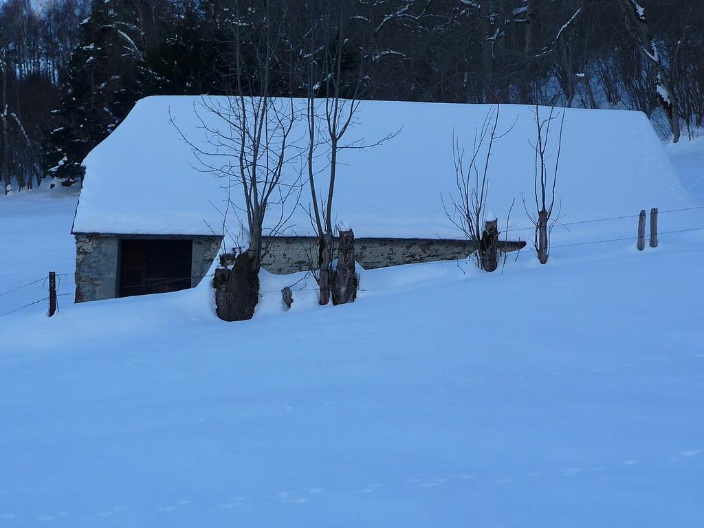 une-grange-bon-etat-desormais-vide-de-betail-une-petite-sortie-a-heure-du-gouter-granges-foraines-en-hiver
