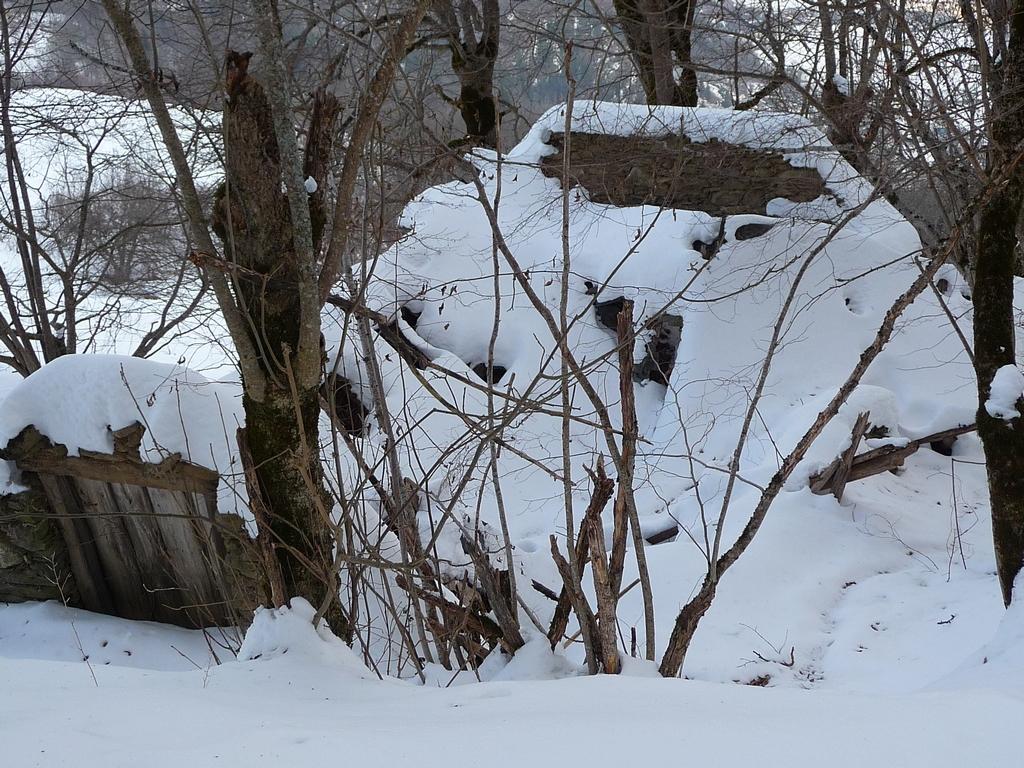 jadis-lieu-de-vie-une-petite-sortie-a-heure-du-gouter-granges-foraines-en-hiver