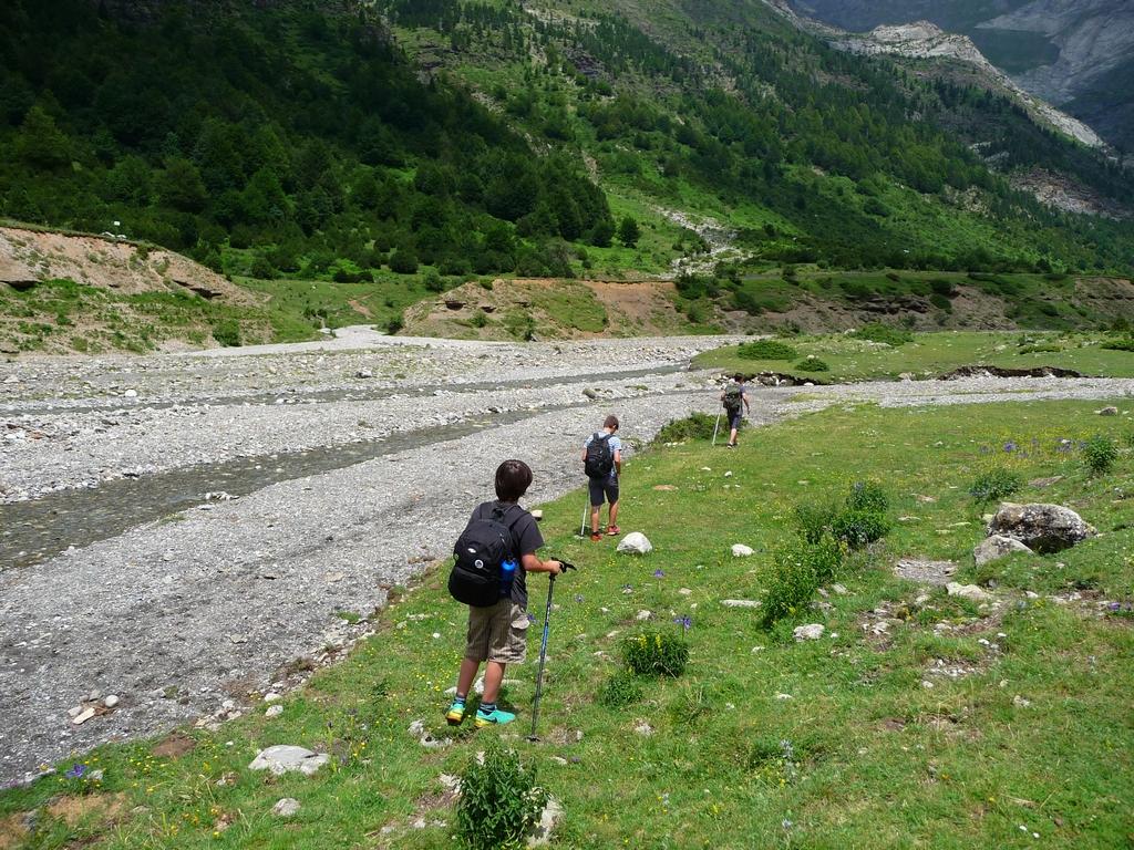 en-randonnee-dimanche-dernier-avec-charmante-famille-quebecoise-une-curiosite-botanique-iris-blanc-pyrenees